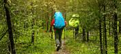 Terapi i naturen hjelper unge å finne ro