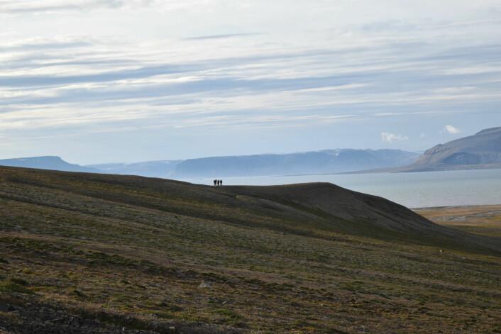 Utsikten fra Flowerdalen. (Foto: Victoria Engelschiøn Nash)