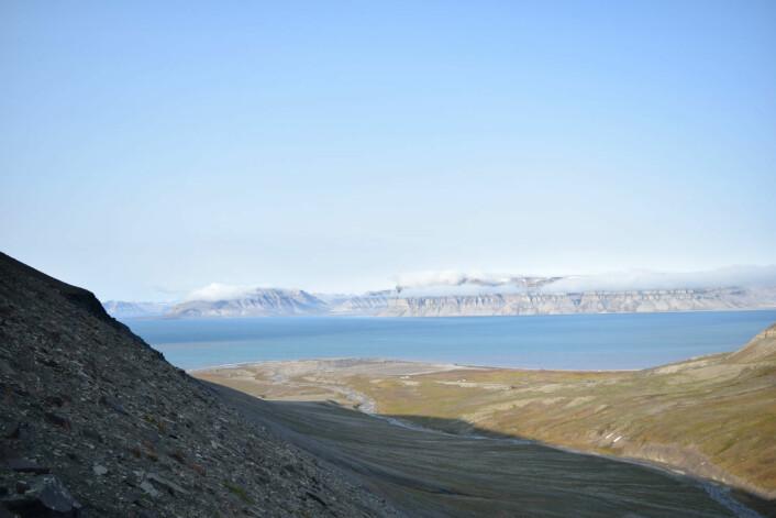 En stor fjord for mennesket. En liten svømmetur for isbjørnen (Foto: Victoria Engelschiøn Nash)