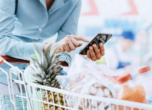 Drømmen om å handle mat på nett