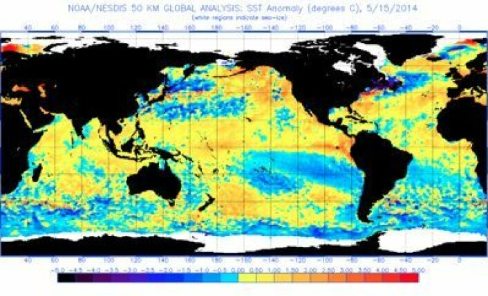 Satellittmålt sjøtemperatur-avvik, 15. mai 2014. (Foto: (NOAA))