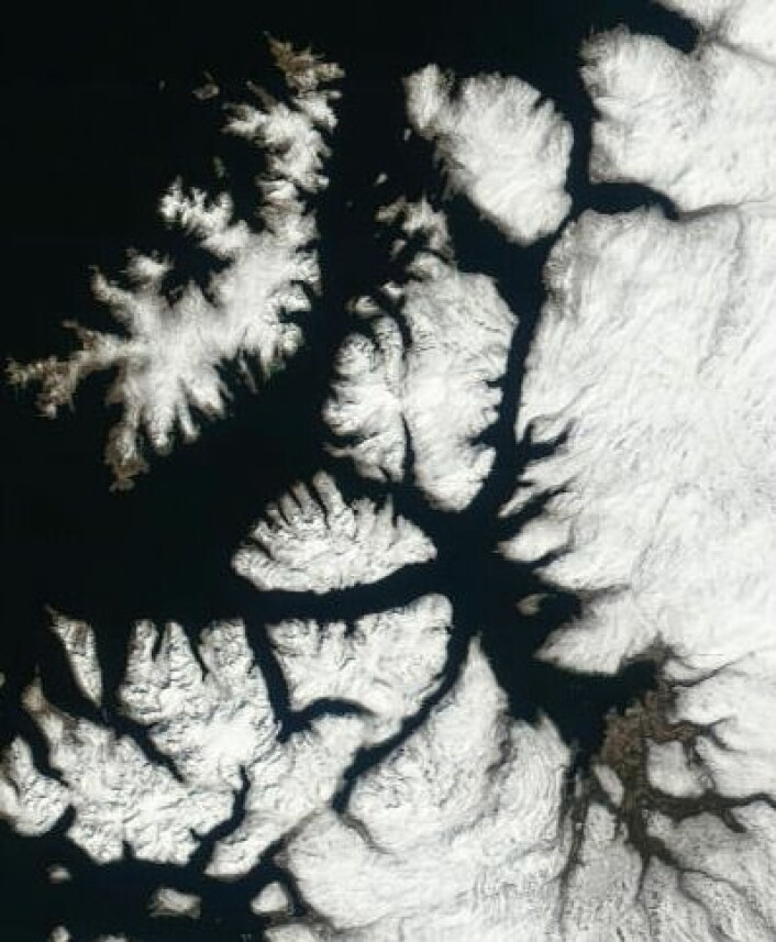 Fortsatt mye snø på Sørøya og i traktene rundt Altafjorden da NASAs satellitt Terra passerte 29. mai. (Foto: (NASA Terra MODIS))