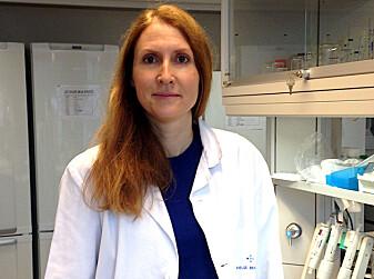 Professor Bodil Bjørndal skal snart teste ut om kyllingpeptider kan ha samme effekt på mennesker. (Foto: UiB)