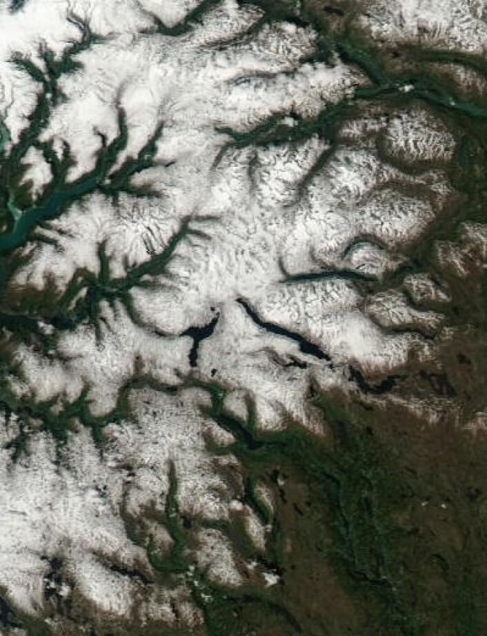 Sognefjellet og Valdresflya sett fra NASAs satellitt Aqua på en nesten skyfri passering fredag 13. juni. (Foto: (NASA Aqua MODIS))