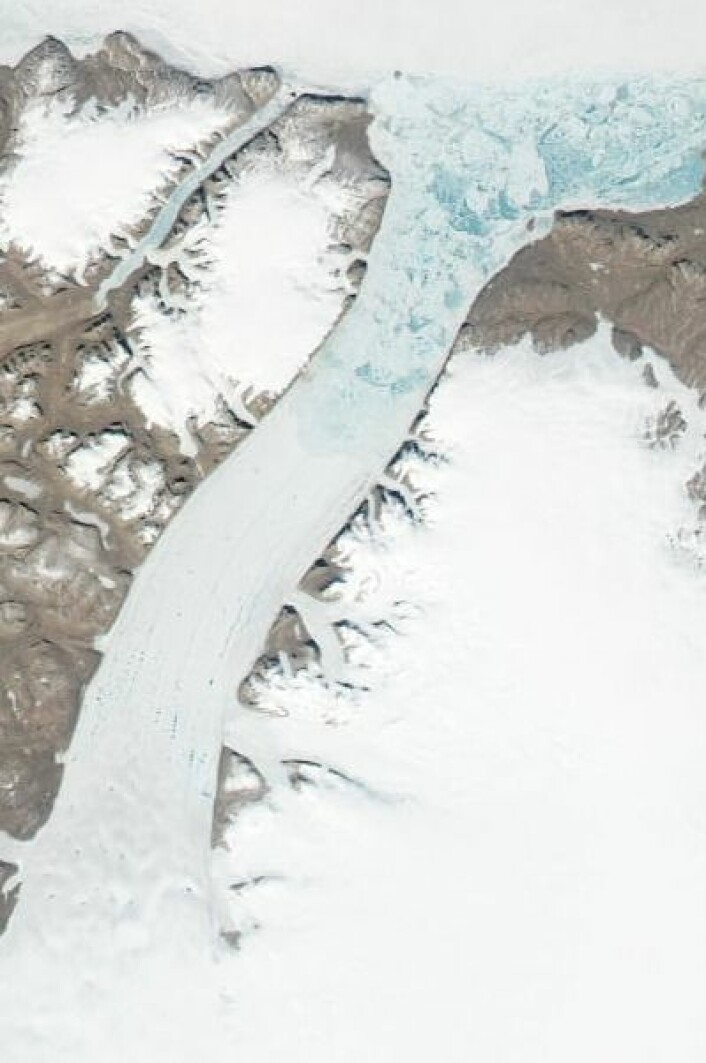 Petermann-breen på Grønland sett fra NASAs satellitt Aqua 27. juni. (Foto: (NASA Aqua MODIS))