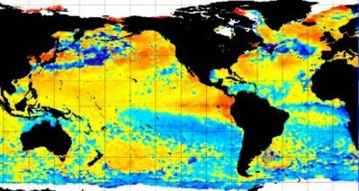 Temperatur-avvik i havoverflaten, offentliggjort av NOAA 3. juli. (Foto: (NOAA))