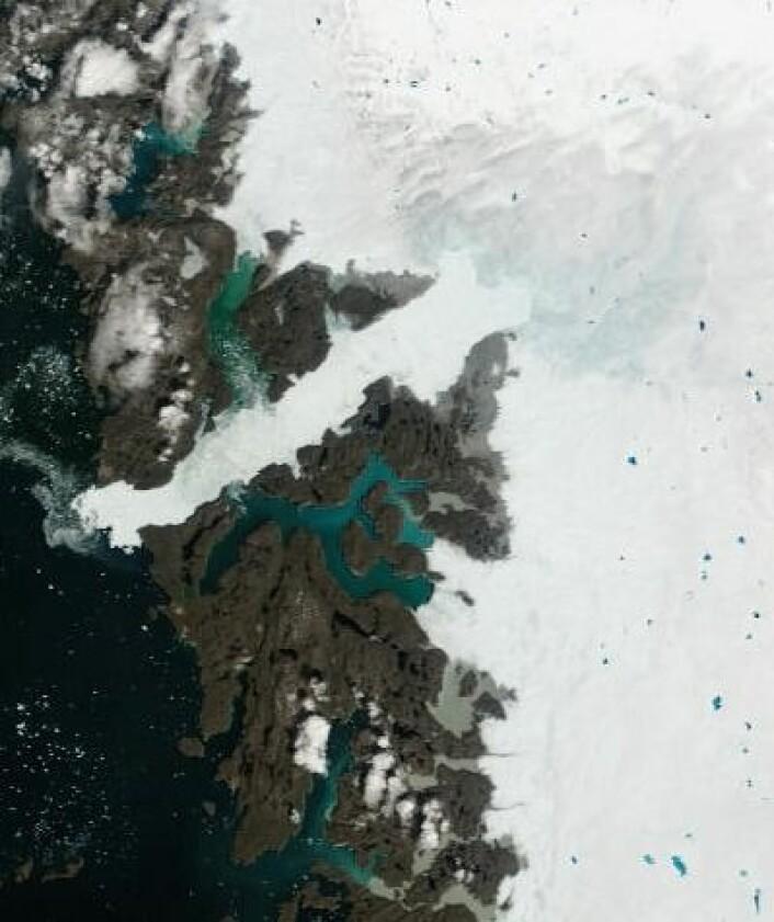 Sommer, sol og smeltevann på isen på Grønlands vestkyst 30. juni. (Foto: (NASA MODIS))
