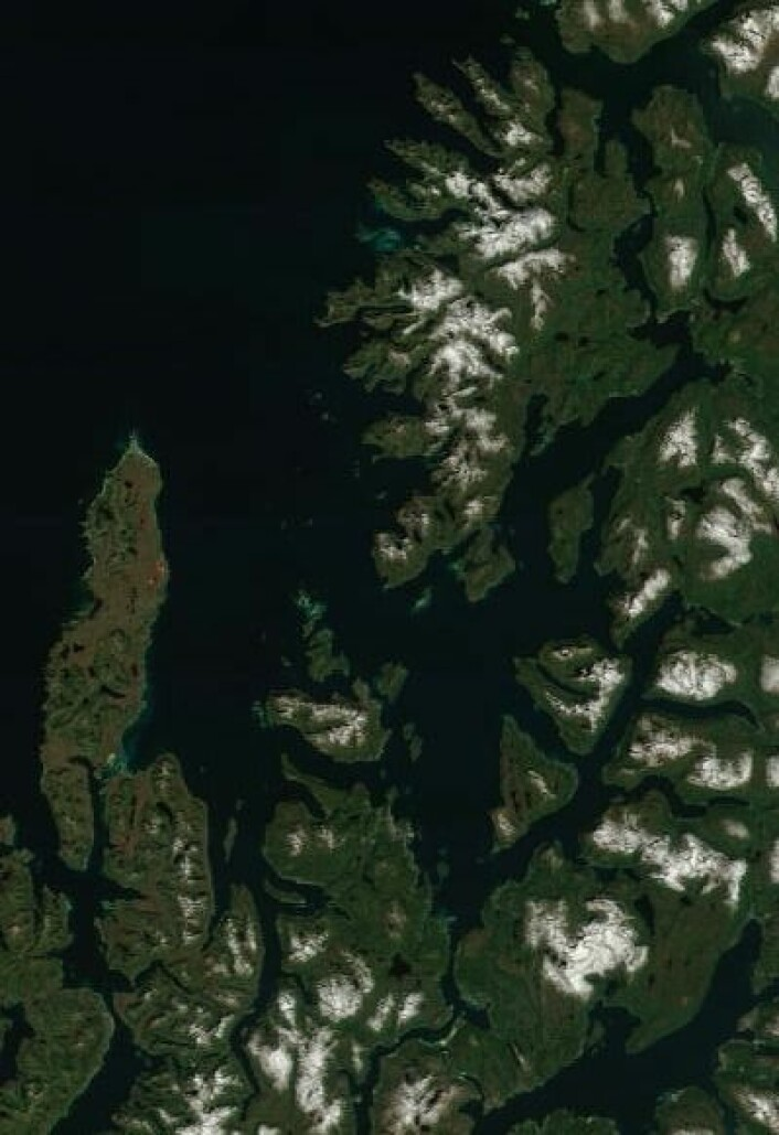 Sol og sommer i Nord-Norge da NASAs satellitt Terra passerte 9. juli. (Foto: (NASA Terra MODIS))