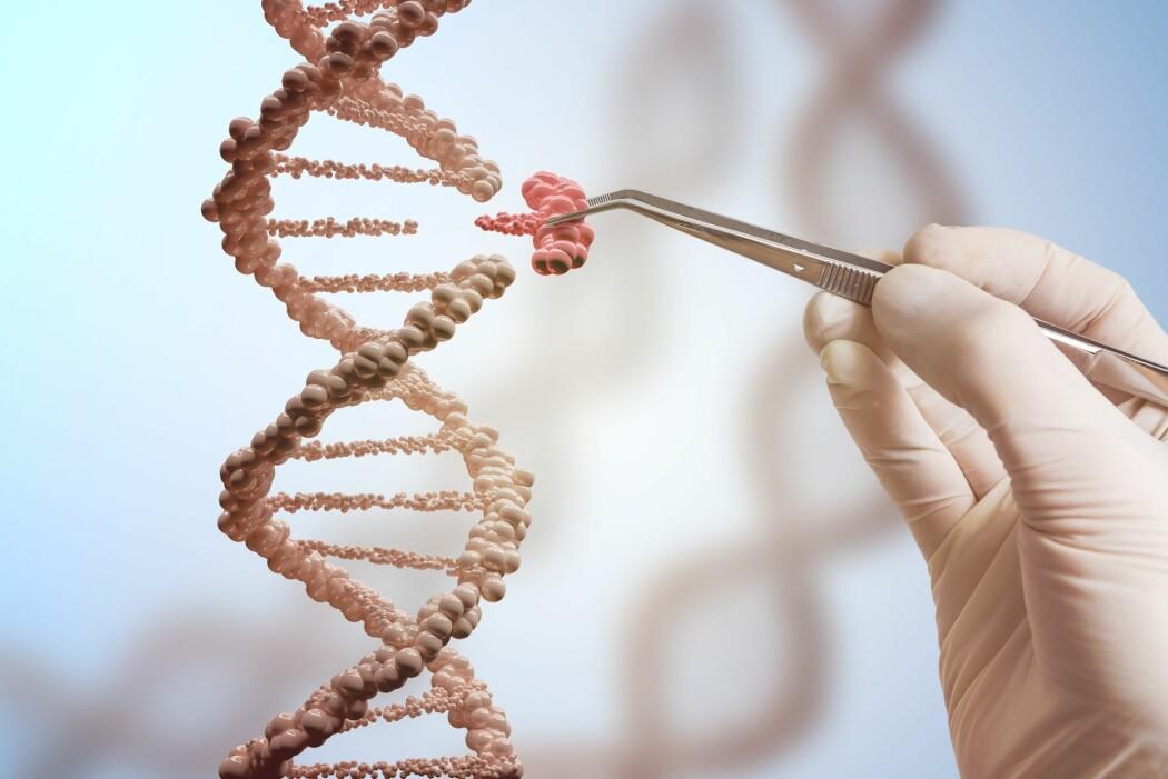 Litt som en liten pinsett eller saks gjør CRISPR-teknologien at forskere kan klippe i DNA med veldig høy presisjon. (Foto: vchal / Shutterstock / NTB scanpix)