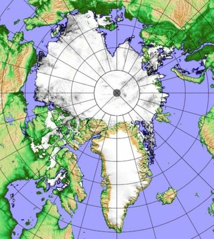 Sjøisen i Arktis 17. juli 2014, observert fra japansk satellitt. (Foto: (PolarView / Univ Bremen))