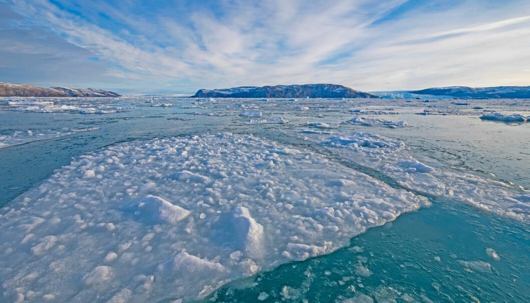 Vekst av sjøis kan ha ledet til kaldere forhold, som igjen kan ha intensivert veksten av is i Arktis lenge før den lille istid på 1300-tallet i Europa. (Illustrasjon: Wildnerdpix / Shutterstock / NTB scanpix)