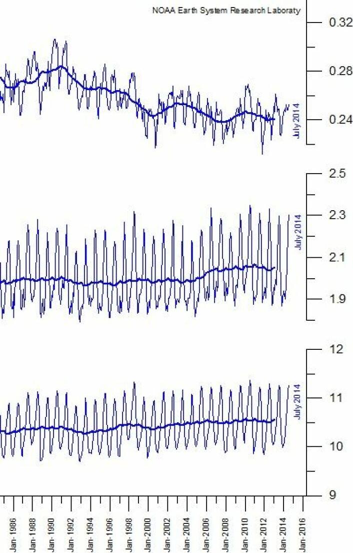Spesifikk luftfuktighet i tre forskjellige høydeskikt de siste 30 årene, midlet globalt. (Foto: (Data: NOAA. Grafikk: Climate4you))