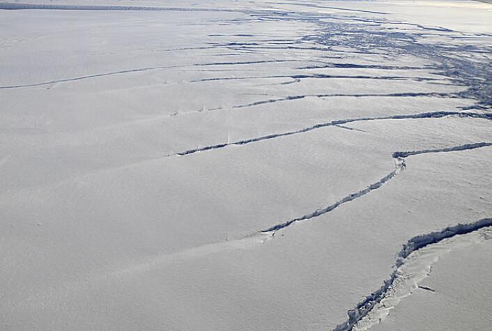 Isbreen Pine Island Glacier i Amundsenhavet er i ferd med å revne. Den er en av breene i dette området som smelter raskest i Antarktis. (Foto: Michael Studinger/NASA/Operation IceBridge)