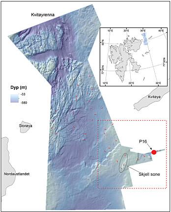 Kartet viser dybde og terreng i Kvitøyrenna. Øyene Nordaustlandet, Storøya og Kvitøya er merket inn. Firkanten i nedre høyre hjørne indikerer hvilket område denne saken beskriver. De røde strekene er prøvetakingsstasjoner. Den røde prikken merket P16 er en «fullstasjon» hvor bunnen blir prøvetatt med flere ulike redskaper. En sone med mye skjellgrus er ringet inn. Kart: Daniel Wiberg & Valérie Bellec