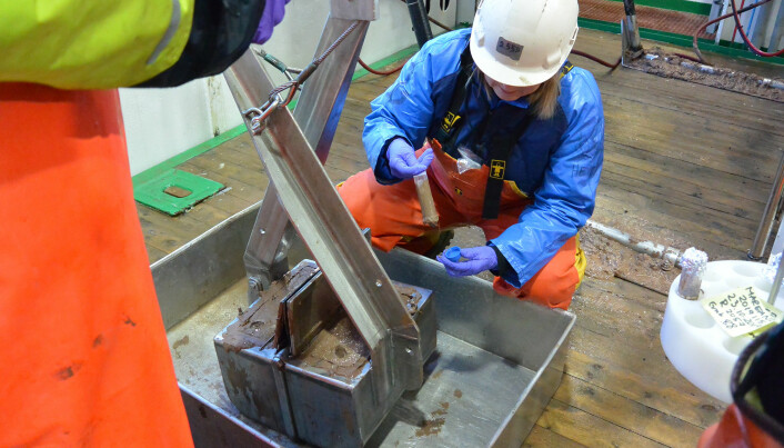 Prøvetaking av sjøvann og sedimenter for eDNA-analyse (environmental DNA). Bilder: Lilja R. Bjarnadóttir, NGU