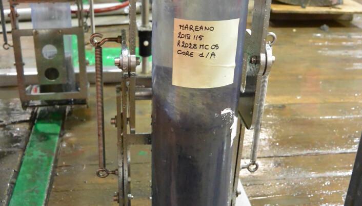 Sedimentprøver tatt med multikjernetaker. Første bilde er et prøverør fra multikjernetaker. Foto: NGU