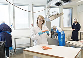 More omega-3 in salmon through breeding