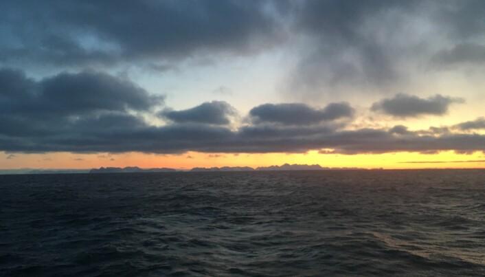 Soloppgang på Svalbard, fjellene på Prins Karls Forland i forgrunn, Spitsbergen i bakgrunn. (Foto: Pål Buhl-Mortensen)