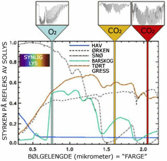 Vannrett skala viser bølgelengdene (fargene) som OCO-2 måler. Fargene i synlig lys (regnbuen) er til venstre. Utover mot høyre strekker det infrarøde, usynlige lyset seg. Her måler OCO-2 bestemte farger (bølgelengder) som suges opp av oksygen og CO2. Figuren viser også hvor mye lys som reflekteres fra forskjellige overflater på jorda i forskjellige farger (bølgelengder). (Foto: (Figur: NASA/JPL, bearbeidet til norsk av forskning.no))