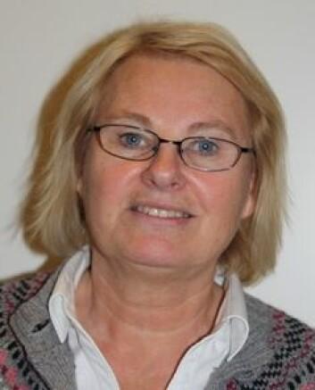 Bente Abrahamsen er seniorforsker ved Senter for profesjonsstudier ved Høgskolen i Oslo og Akershus. (Foto: Privat)
