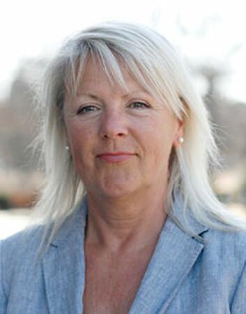 Forskningen som Liss Kerstin Sylvén har ledet, bekrefter at de som bruker mye tid på interaktive dataspill, får bedre ordforråd. (Foto: Göteborgs universitet)
