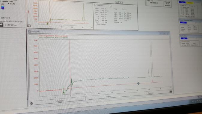 Slik ser dataene fra analysen ut. Den høye toppen til høyre indikerer pinosylvin. Foto: Cathrine Glosli