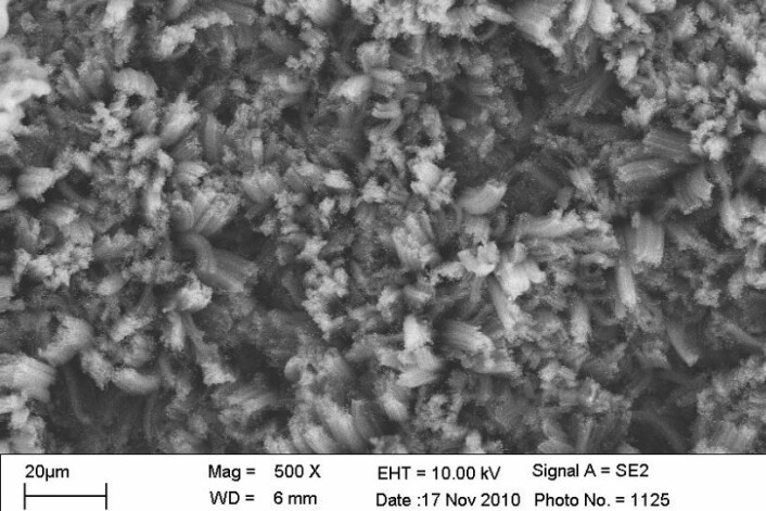 Dette NASA-elektronmikroskopbildet viser nano-karbonrør på nært hold. -Se hvordan rørene ligger hit og dit i alle retninger. Når en bit lys treffer en slik overflate, vil den med veldig høy sannsynlighet bli tatt opp av en av veggene i et av rørene og ikke slippe ut igjen. Stoffet er slik den rake motsetningen til et speil, som er så jevnt og blankt at alt lys reflekteres tilbake. (Foto: Stephanie Getty, NASA Goddard)