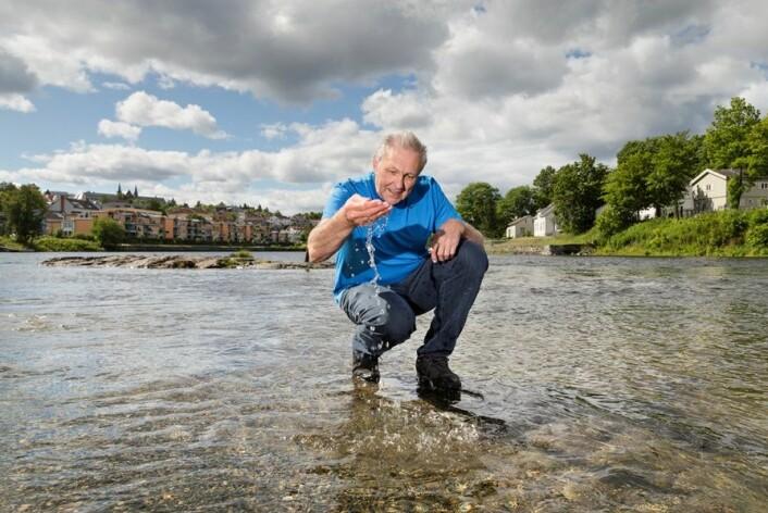 Per Stenstad i SINTEF har klart å fange og bryte ned skadelige hormon-hermere som havner i vannet vårt. Her er han avbildet i Nidelva i Trondheim. (Foto: Thor Nielsen)