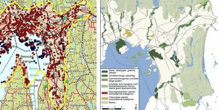 Kartet til venstre er fra naturbasen og viser naturmangfoldet i Oslo. Samme kartet til høyre er fra Plan- og bygningsetatens egen registrering av grønne områder i Oslo. Kartene viser det dårlige skille mellom ulike grøntområder. (Foto: (Illustrasjon: NIBR/Hanssen))