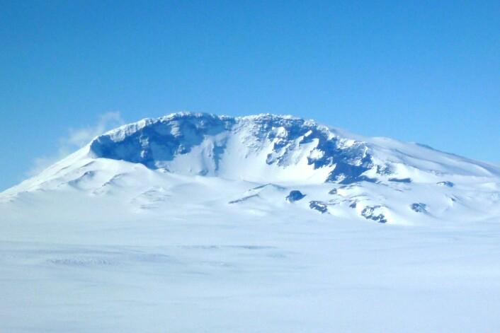 Forskerne fant nesten ikke sot i Antarktis. (Foto: Doug Wiens)