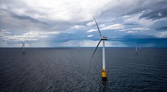 Havforskningsinstituttet ber regjeringen droppe havvind utenfor Hammerfest