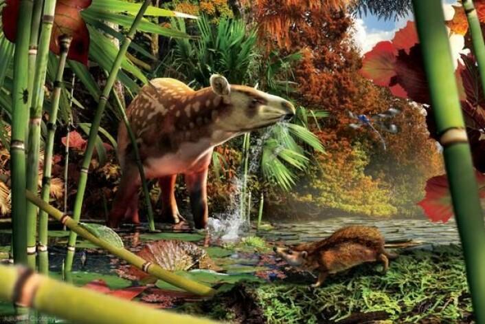 Illustrasjonsbilde av Heptodonen og Silvacola acares, omgitt av regnskog. (Foto: (Illustrasjonsbilde: Julius Csotonyi))