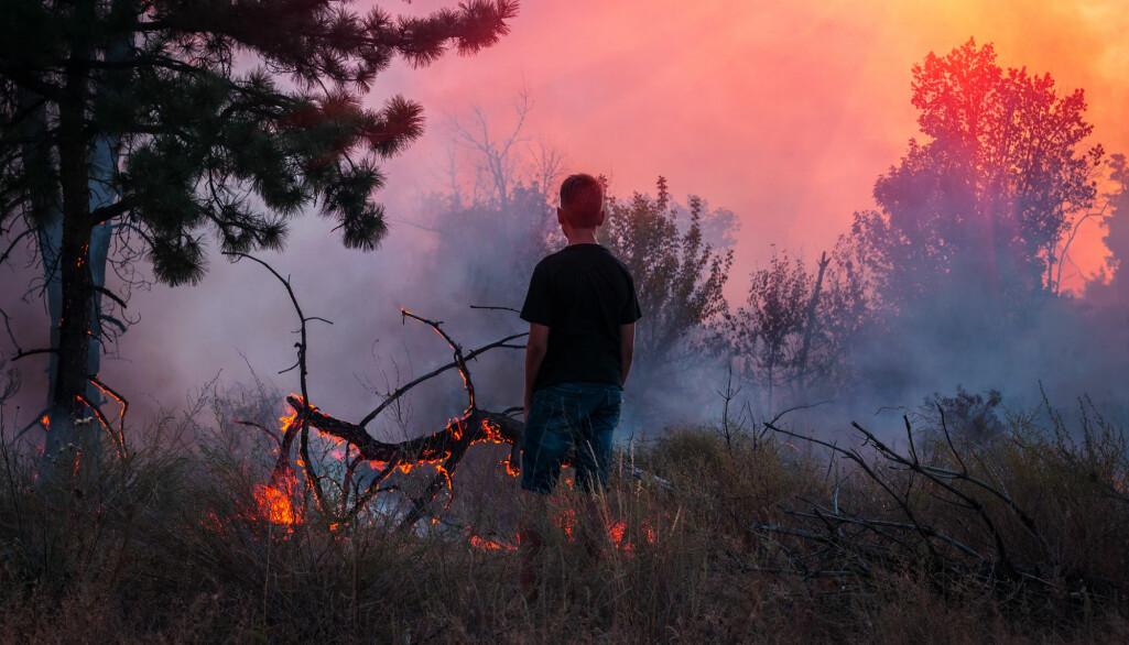 En enorm innsats må legges inn for å bevare biosfæren og for å unngå utallige lidelser på grunn av klimakrisen, skriver forskerne bak oppropet. (Foto: Lumppini / Shutterstock / NTB scanpix)