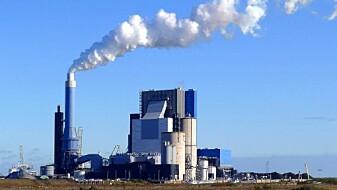 Norske pellets erstatter forurensende kull i store kraftverk
