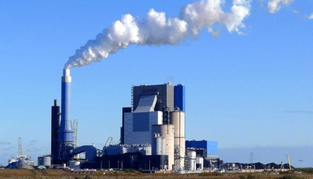 Ved dette kraftverket i Rotterdam er pelletsene testet i full skala med svært godt resultat. (Foto: ENGIE)