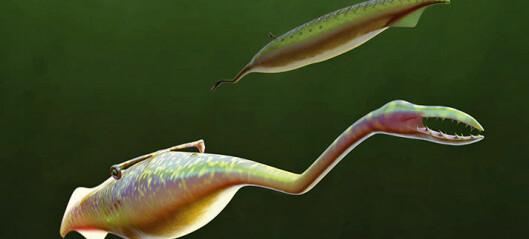 Dette monsteret levde i havet for lenge siden, men hva er det for noe?