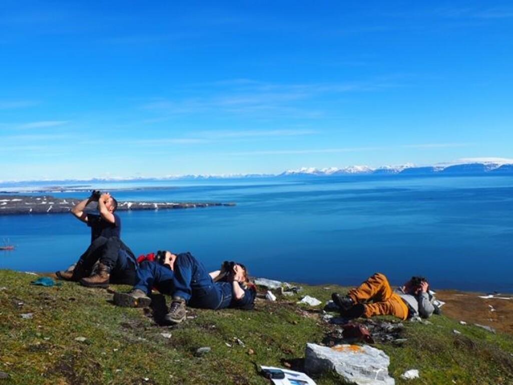 Forskningen baserer seg på årelang kartlegging i regi av et landsdekkende program for overvåking av sjøfugl langs hele kysten av Norge og i tilstøtende havområder. Dette bildet er fra forskning på krykkjer på Svalbard sommeren 2019.