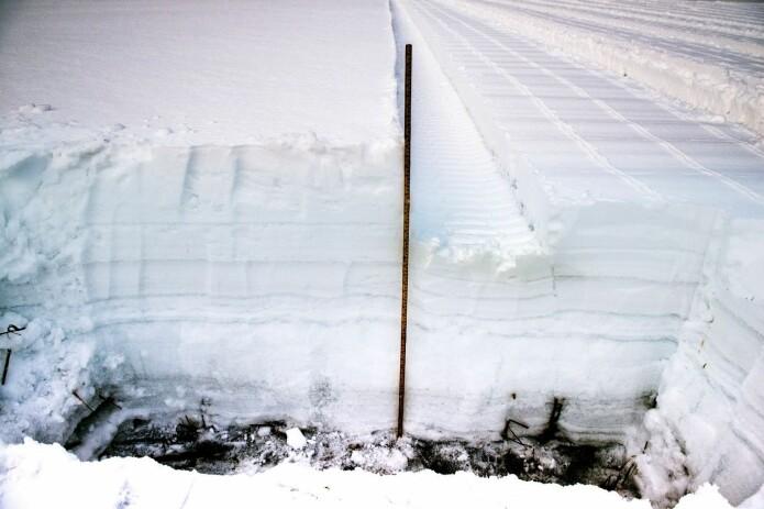 Kvaliteten på dataene ble dårligere når snødybden var høyere en enn halv meter. (Foto: NIKU)