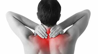 Kronikk: Derfor virker kiropraktikken