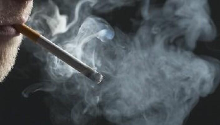 Ikke dumt å stumpe røyken spontant