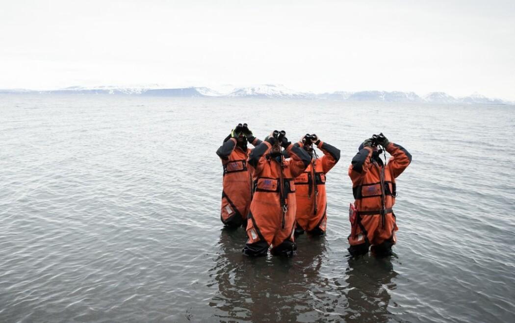 Bildet viser forskere som henter inn ny kunnskap om sjøfugl på Svalbard, en av de mange oppgavene til Norsk Polarinstitutt. (Foto: Jean-Baptiste Strobel)
