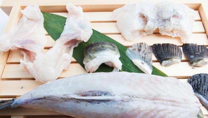 Skal det være litt giftig fisk?
