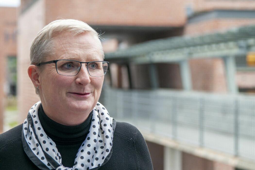 Førsteamanuensis Nora Simonhjell (UiA) har saman med Benedikt Jager (UiS) redigert si tredje utgåve av Norsk litterær årbok.