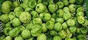 Fleire eksotiske grønsaker veks godt i norske veksthus