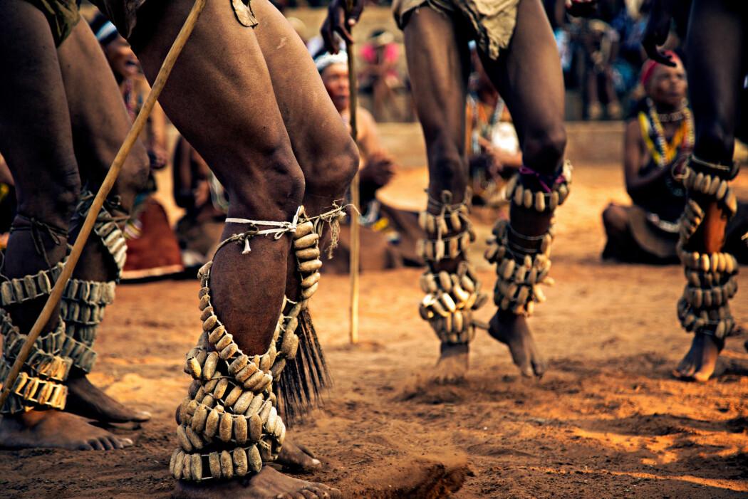 Stammer det moderne mennesket herfra? Bildet viser menn i Botswana som danser en tradisjonell dans.