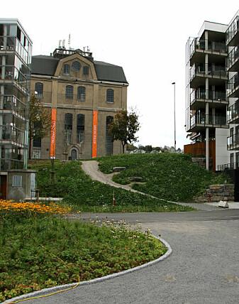 I bakgrunnen ses Spriten på Klosterøya i Skien. Den tidligere trespritfabrikken har blitt omformet til kunsthall. Foto: Jorid Martinsen/NIKU