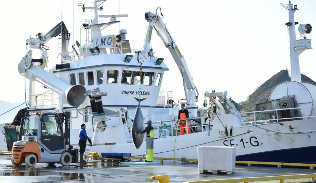 Vibeke Helene delivers its catch to the landing facility at Sandshamn.