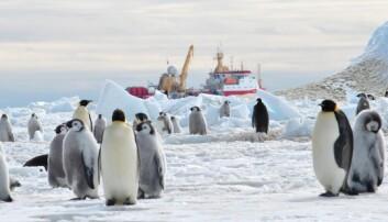Nesten iskaldt dypvann smelter is