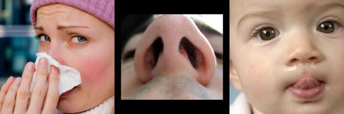 Det kryr av pene mennesker med en kledelig klut foran nesen i de store bildebasene, her et bilde fra iStockphoto. Det fantes ingen bilder av voksne, snørrete mennesker, men vi fant en nese uten snørr i Colourbox og en baby med litt snørr i iStockphoto.