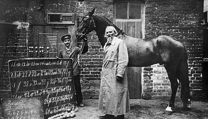 Hesten Hans skapte en sensasjon på starten av 1900-tallet, da han tilsynelatende ga riktig svar på mattestykker, ved å trampe hoven sin riktig antall ganger. Det ble senere vist at han i virkeligheten bare leste trenerens kroppsspråk. Han ga navnet sitt til Clever Hans-effekten.